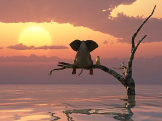 Panel Szklany Podświetlane Drzewa an elephant and a dog are sitting on a tree fleeing a flood