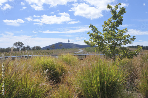 Foto  Telstra Tower Black Mountain Australia capital city of Canberra