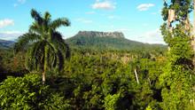 El Yunque Tabletop Mountain Hi...