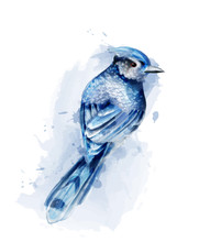 Cute Blue Bird Watercolor Vect...