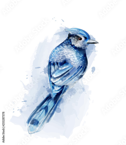 Fotografiet Cute blue bird watercolor Vector isolated on white