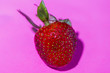 canvas print picture - One fresh strawberry on pink background, macro