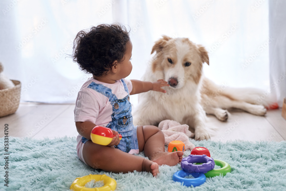 Fototapety, obrazy: Baby with family dog on the floor