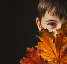 Portrait Of Boy With Brown Eyes Covering Face With Autumn Leaves