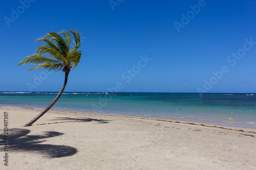 Samana beach, Dominican Republic