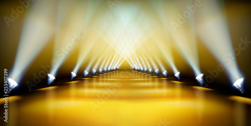 Fotobehang Licht, schaduw Stage podium during the show. Golden carpet. Fashion runway. Vector illustration.