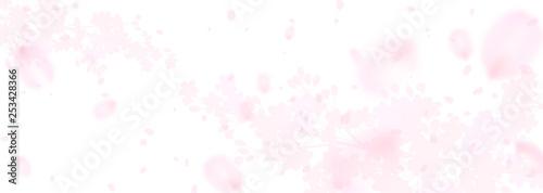 Valokuvatapetti 幻想的な桜