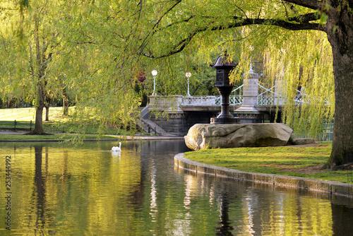 Photo  Japanese Lantern and Footbridge in Boston Public Garden