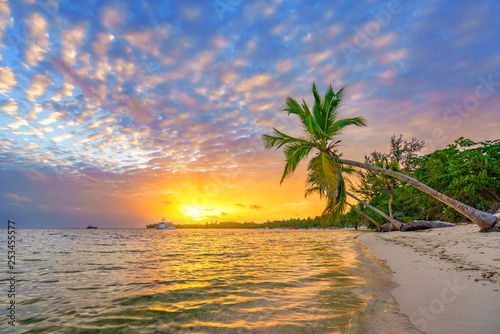 plakat Beautiful sunrise over tropical beach and palm trees in Dominican republic