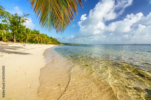 Foto op Plexiglas Europa Palm tree leaf over ocean water on tropical beach in Dominican republic