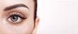 Female Eye with Extreme Long False Eyelashes. Eyelash Extensions. Makeup, Cosmetics, Beauty. Close up, Macro