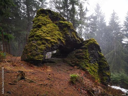 Fotografie, Obraz  Langertsfelsen auf dem Naturlehrpfad Gießübler Schweiz im Thüringer Wald
