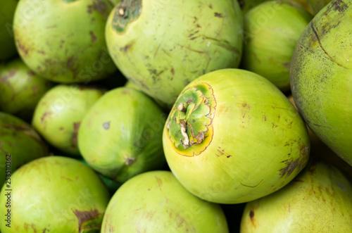 coconut fruit stacked on the marketplace Fototapeta