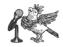 Cartoon Singing Parrot With Microphone Sketch Engraving Vector Illustration. Scratch Board Style Imitation. Hand Drawn Image.