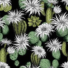 Fototapeta Do biura Seamless pattern with green succulents, cactus plants and flowers. Hand drawn vector on black background.