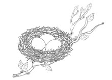Outline Tree Branch With Bird Nest With Three Eggs In Black Isolated On White Background.