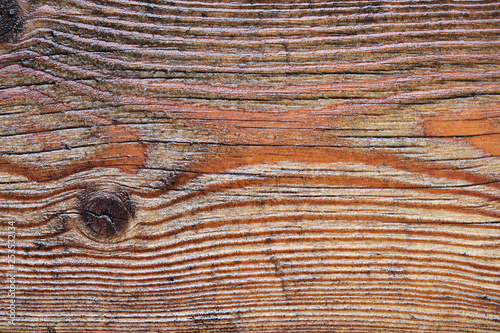 Fotografie, Obraz  Texture planche