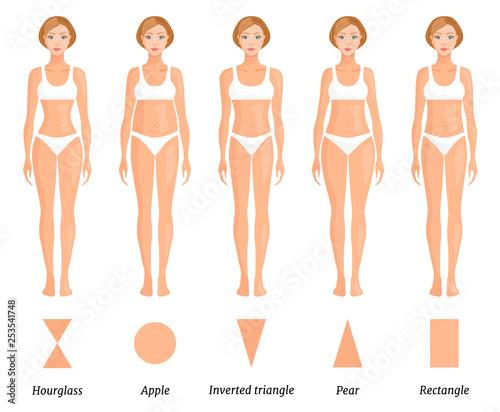 Fototapeta Forms of female body type. Various figures of women. Vector. obraz