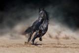 Czarny ogier biegający po pustynnym pyle na tle dramatycznego - 253565351