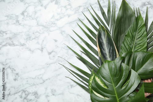 Poster Trees Flat lay composition with tropical leaves and space for text on marble background