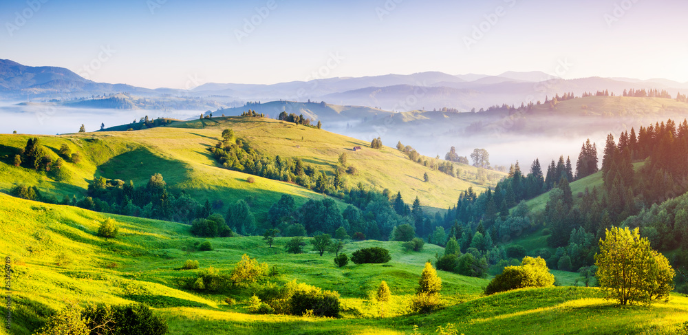 Fototapety, obrazy: Bright rolling countryside around a farm in the morning light.