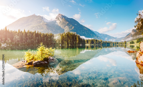 Photo Stands Trees Famous tourist attraction of calm lake Hintersee.
