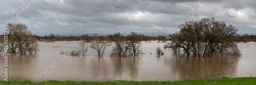 Panorama of Flooding of the Laguna de Santa Rosa near Sebastopol, CA, USA Wallpaper Mural