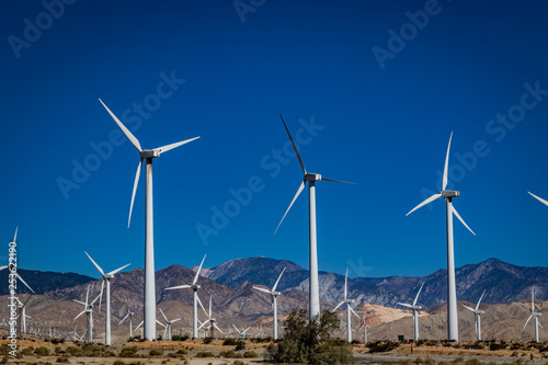 Fotografie, Obraz  wind turbines in the desert