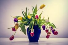 Bouquet De Tulipe Multicolore Dans Un Vase Bleu