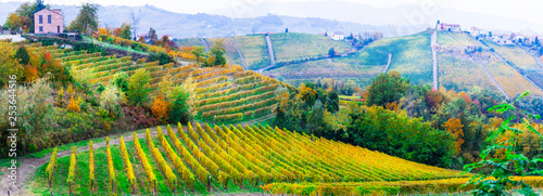 Foto auf AluDibond Himmelblau Beautiful vineyards of Piedmont and small villages , northen Italy