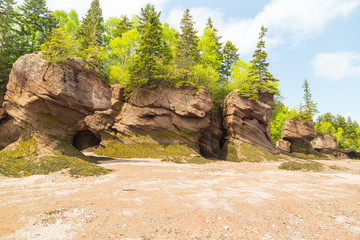 View of Hopewell Rocks from Ocean Floor of Bay of Fundy at Low Tide