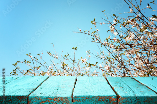 wooden table in front of spring blossom tree landscape Canvas Print