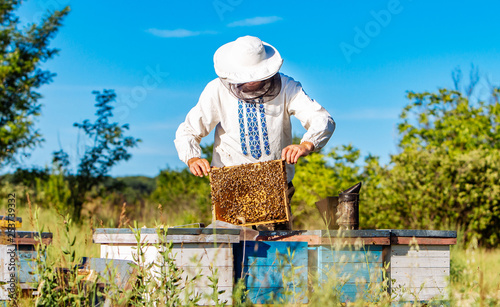 Fotografie, Obraz  Young beekeeper working in the apiary