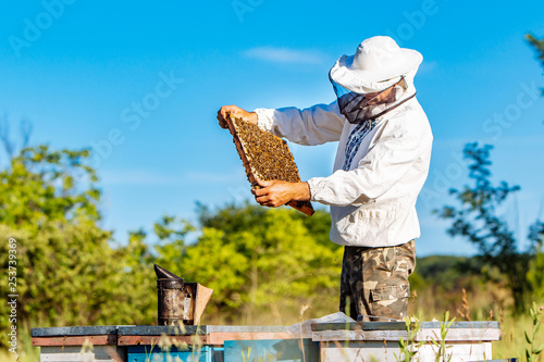 Photo Young beekeeper working on his apiary and collecting honey from hives