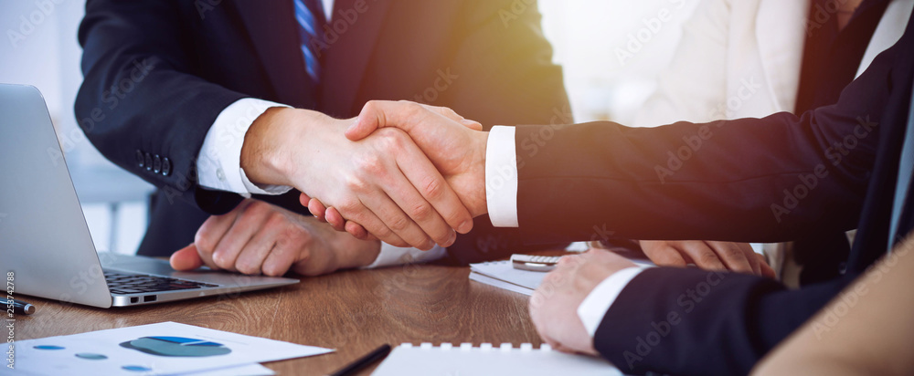 Fototapeta Business people shaking hands at meeting or negotiation in the office. Handshake concept. Partners are satisfied because signing contract