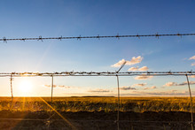 Looking Though A Barbed Wire F...