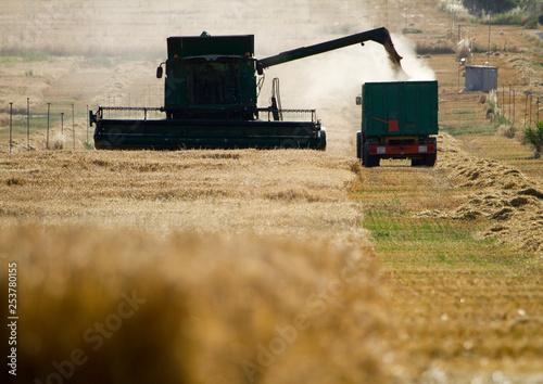 Photo cosecha cereal