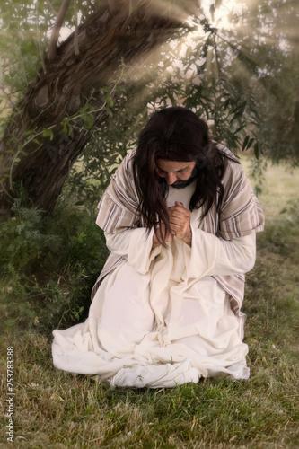 Prayer in Garden of Olives Canvas Print