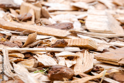 Valokuva  Textured background of scattered wood chips of different shapes and colors