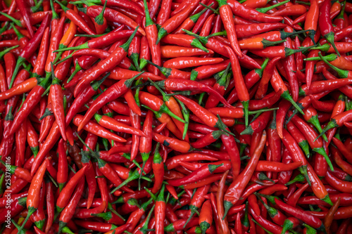 Tuinposter Hot chili peppers red hot chili peppers