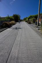 Baldwin Street, South Island, New Zealand, Dunedin