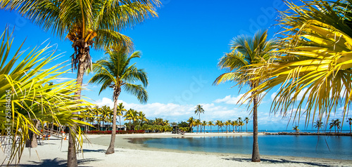 The Round Beach at Matheson Hammock County Park Miami Florida Wallpaper Mural