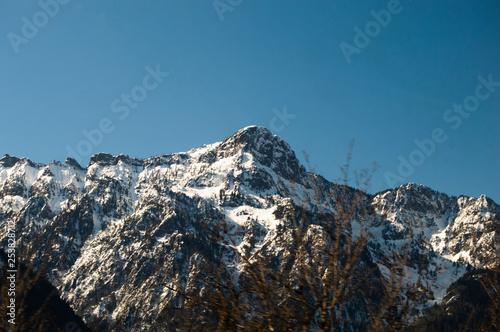Washington Mountain Landscape