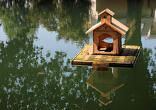 Handcrafted Floating Wooden Bi...