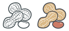 Flat Vector Icons Of Peanut