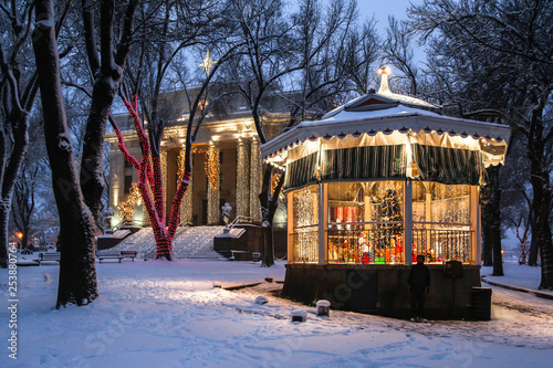 Courthouse and gazebo in the snow Canvas Print