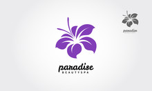 Paradise Beauty Spa Is A Clean...