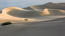 Soft Light On Rolling Sand Dunes In Death Valley, California