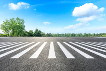 Zebra Crossing Road Ground And Green Forest Landscape In Summer