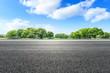 Asphalt road and green forest landscape in summer season
